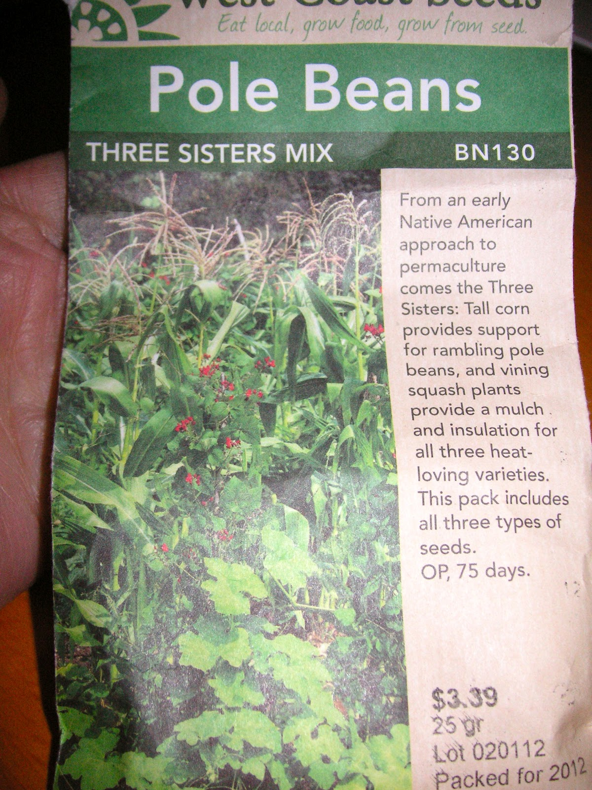 planting a three sisters garden that bloomin garden