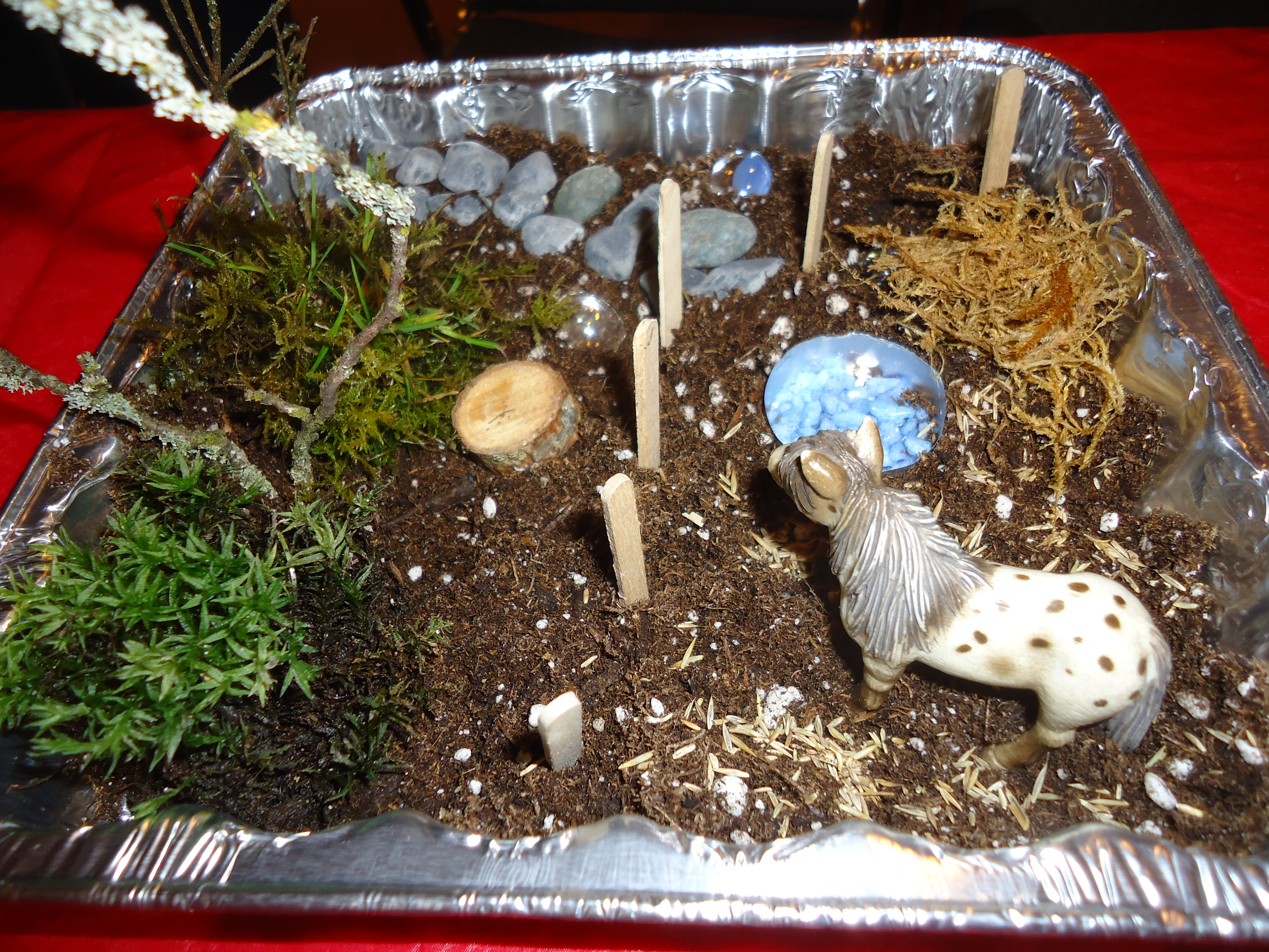 Making miniature gardens with children that bloomin 39 garden for Making things for the garden