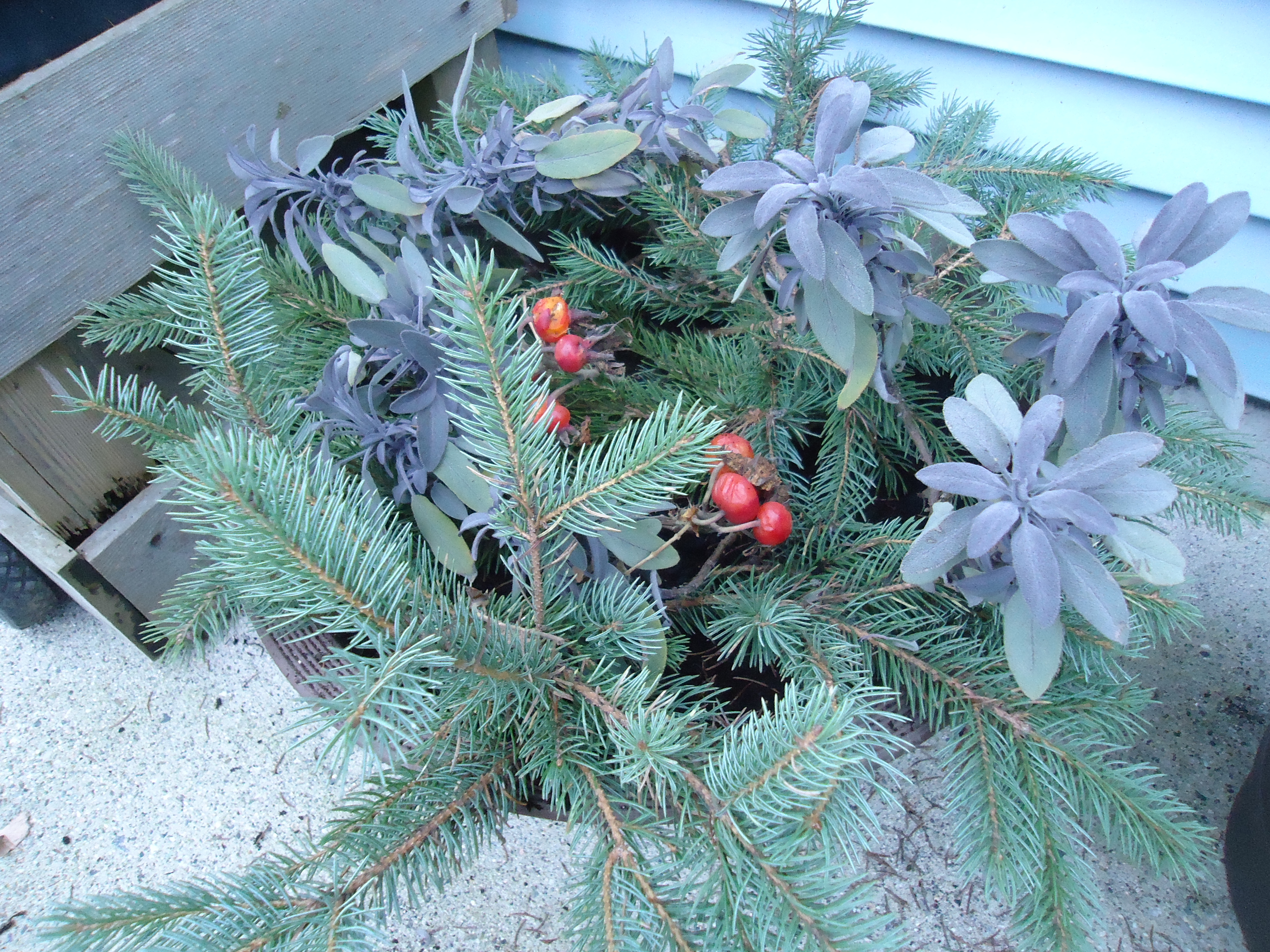 using evergreens for winter decor and my great thrift shop buy