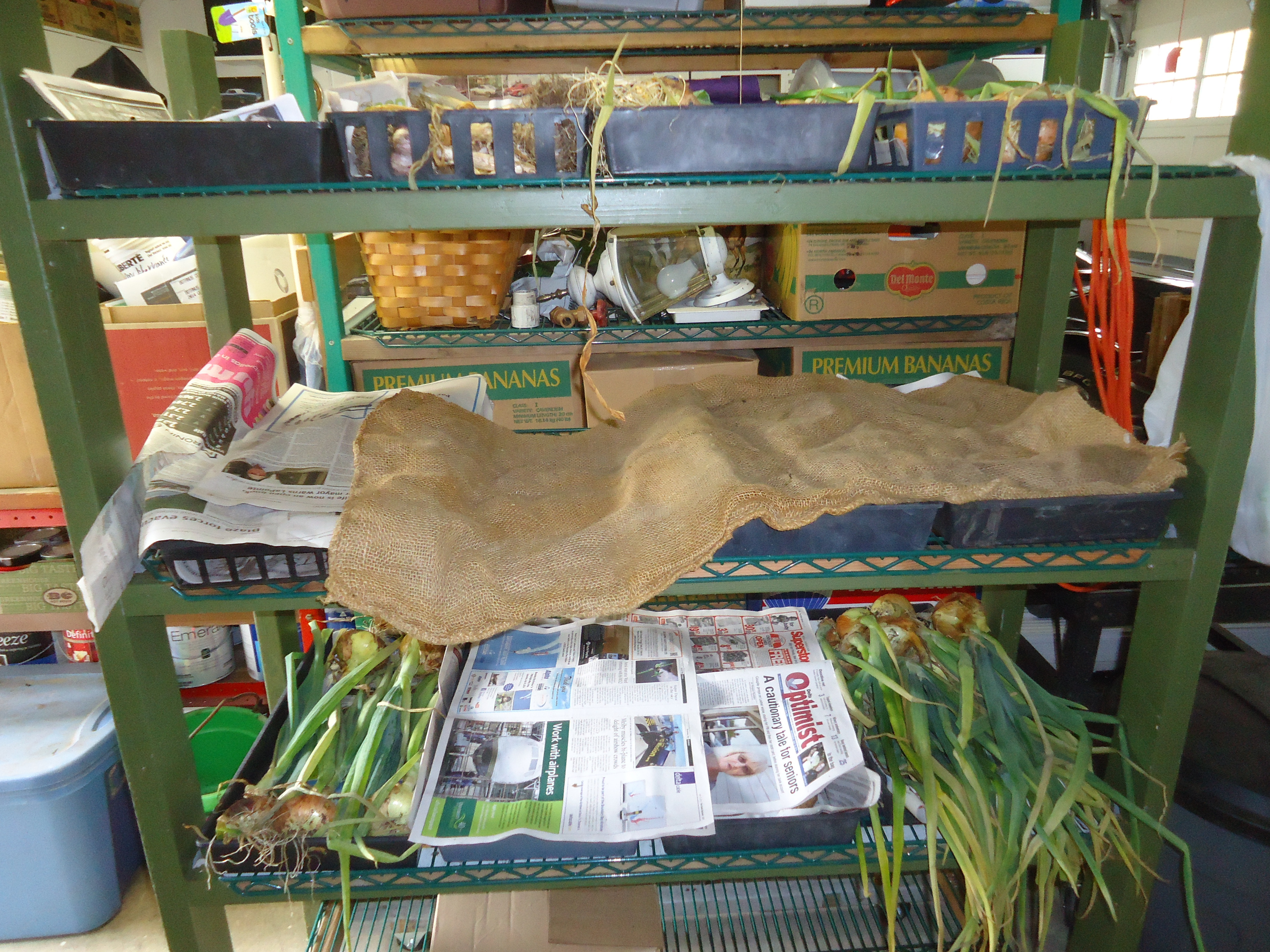 Preparing The Harvest For Donating To The Food Bank That Bloomin
