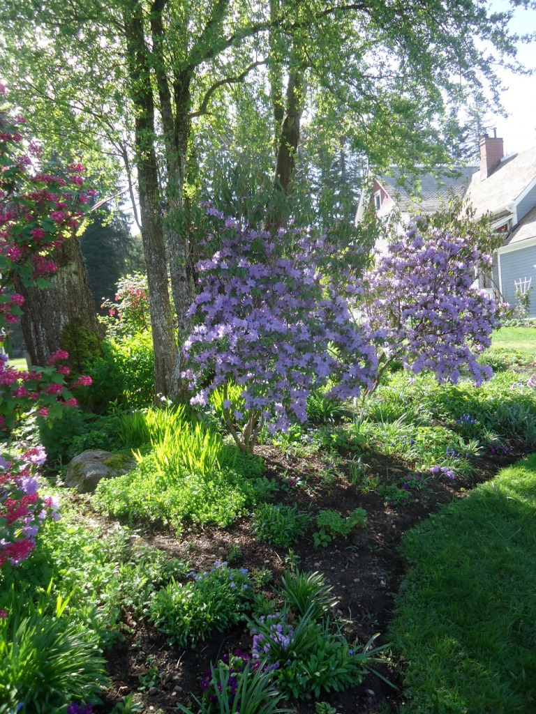 Are You Interested in Learning About Heritage Gardens?