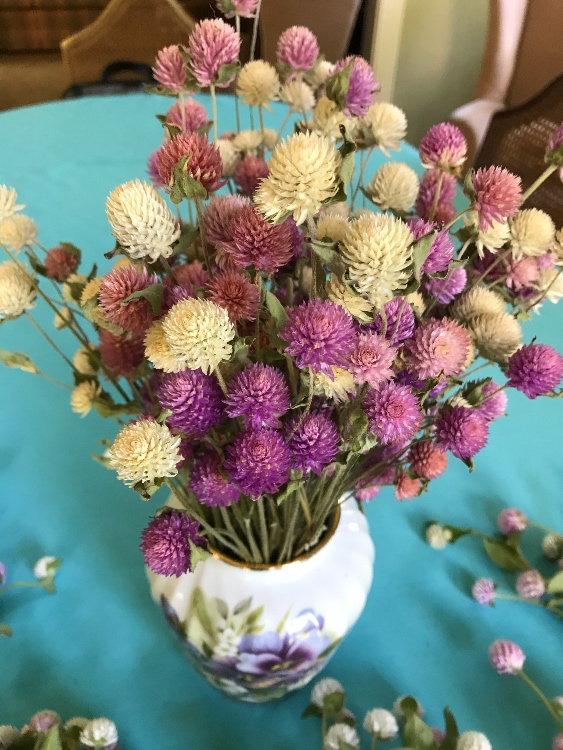 How to Grow Flowers for Drying